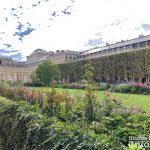 Palais Royal – Dans le jardin – 75001 Paris (63)