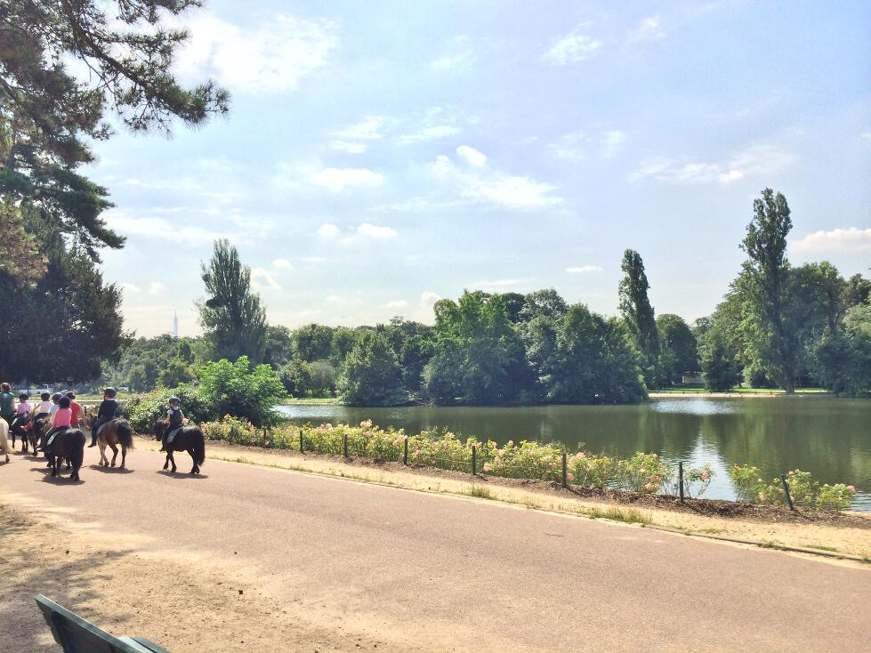 BoisSaint-James-–-Dernier-étage-terrasse-sur-jardins-–-92200-Neuilly-sur-Seine-4