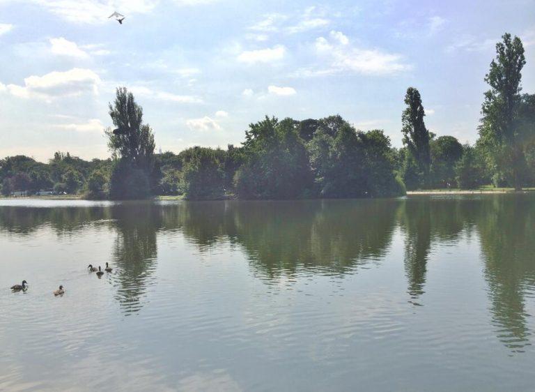 BoisSaint-James-–-Dernier-étage-terrasse-sur-jardins-–-92200-Neuilly-sur-Seine-5