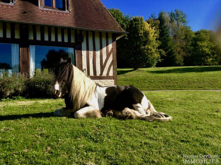 CalvadosPays-d'Auge-–-Rare-propriété-équestre-de-14-ha-–-14100-Sud-de-Lisieux-2