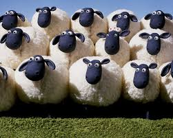 le mouton a 5 pattes