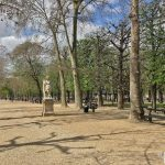 VavinLuxembourg – Grand volume au calme sur cour fleurie – 75006 Paris 2