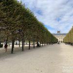 Palais RoyalLouvre – Volume, charme et calme – 75001 Paris (4)