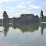 Pont de NeuillyBois – Grand salon au calme et proche de tout – 92200 Neuilly sur Seine (17)