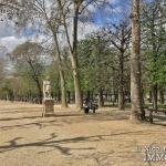 LuxembourgPanthéon – Grand classique haussmannien plein sud 75005 Paris (5)