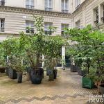 Rue du BacSèvres Babylone – Caractère, volumes et lumière – 75007 Paris (4)