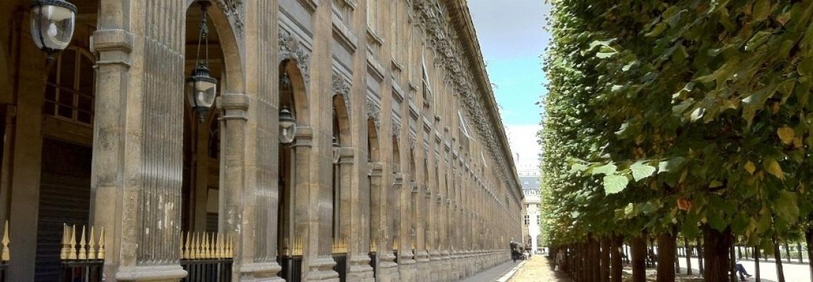 Palais-Royal – Dans le jardin – 75001 Paris (2)